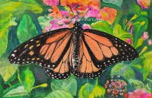 Monarch Butterfly by Michelle Bailey - prints available